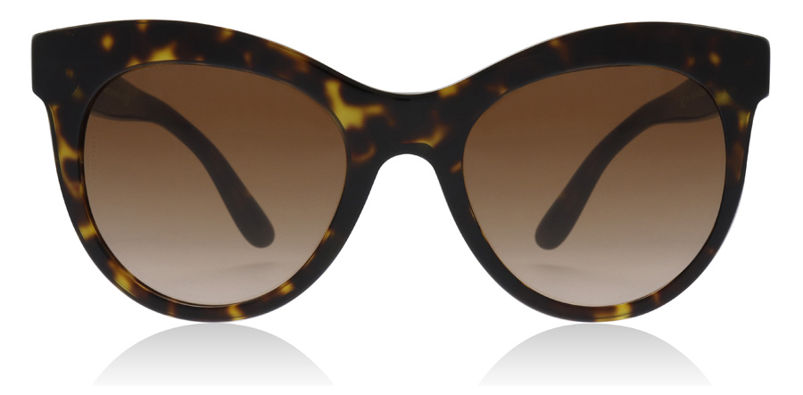 Dolce and Gabbana DG4311 Havana 502/13 51mm